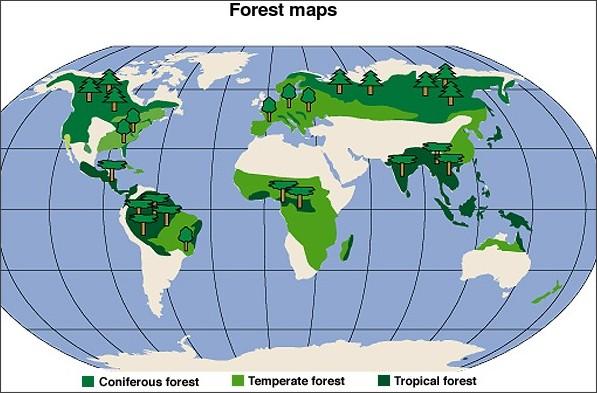 English speaking countries Melanesian Fijans Pinterest English - copy world map pdf file