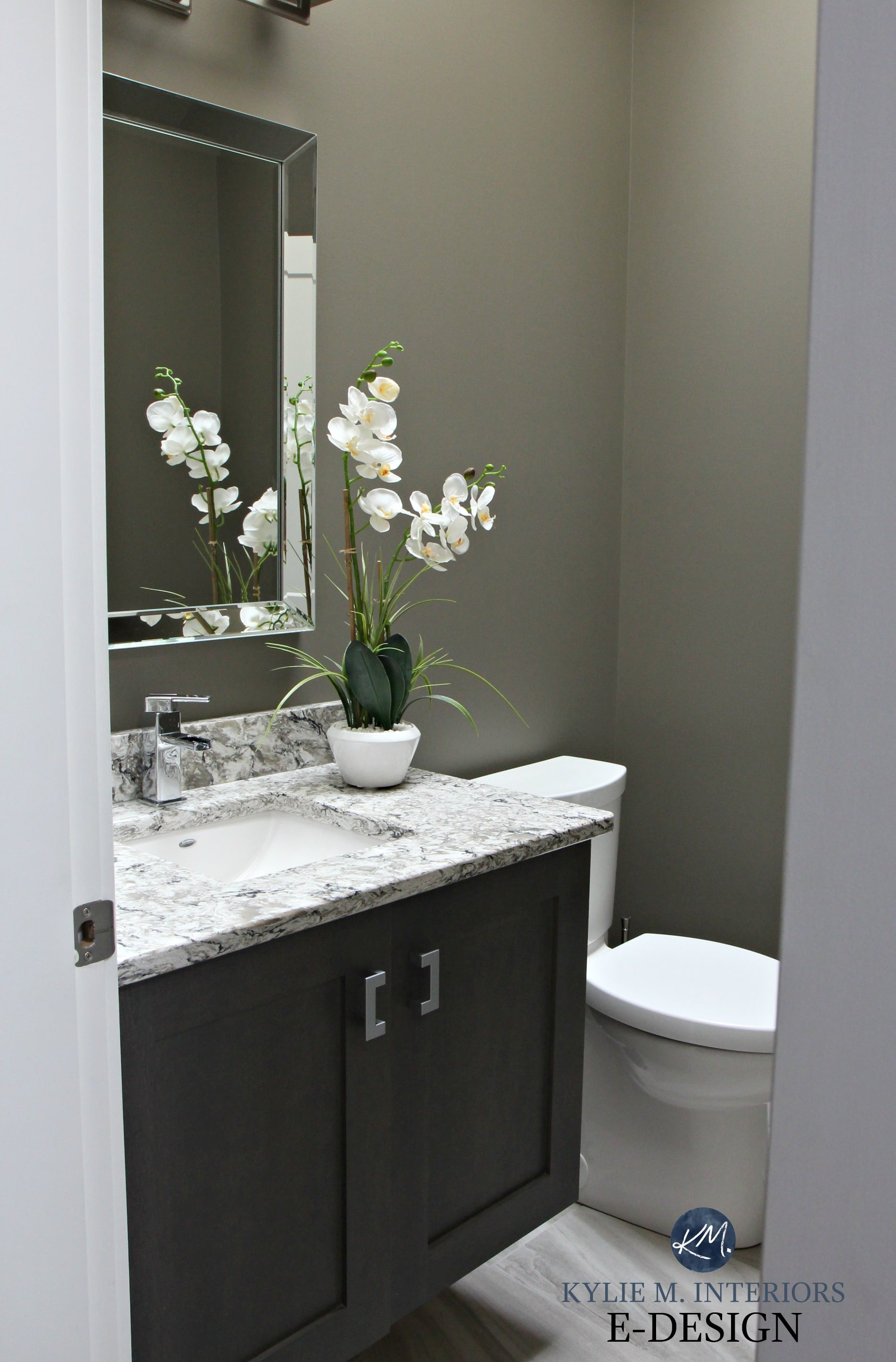 Sherwin-williams Countertop Paint Small Bathroom Powder Room In Sherwin Williams Anonymous With