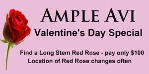 Ample Avi - Valentine's Day Special