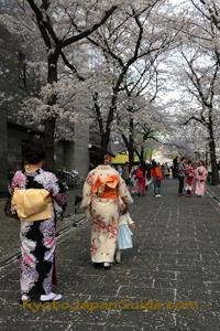 Kimono on Tatsumi-dori 071
