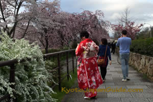 Pink skaura and red kimono 023