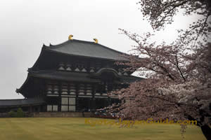 Todai-ji Temple Nara 031