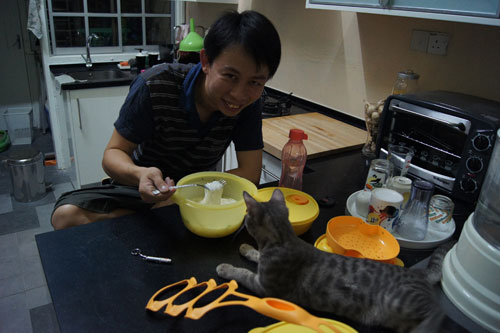cendawan the Bengal approves of tupperware!