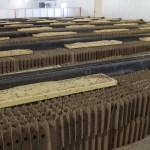 Grillons et ténébrions sont élevés dans des poulaillers modifiés chez Entomo Farms.