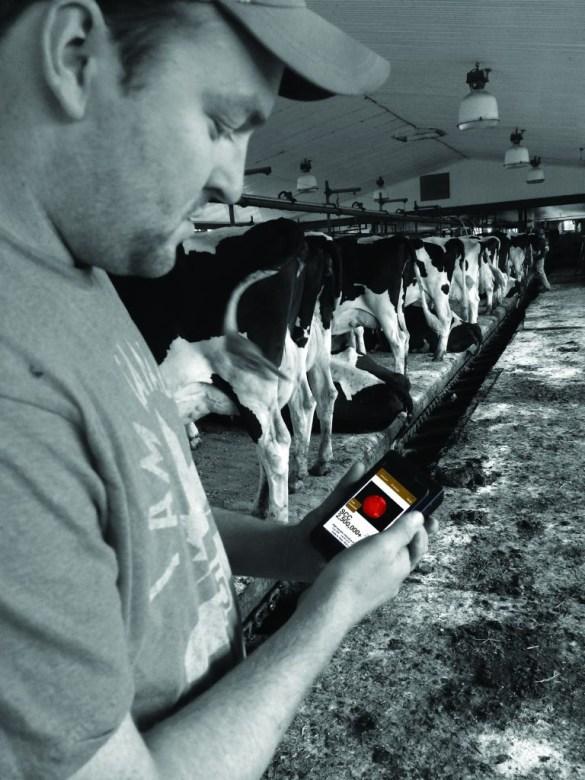 L'application Dairy SCC permet à l'éleveur d'obtenir des données immédiates sur la santé de chacune de ses vaches.