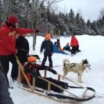 Activités de plein air pour une centaine d'élèves de la Toronto French School à Québec.
