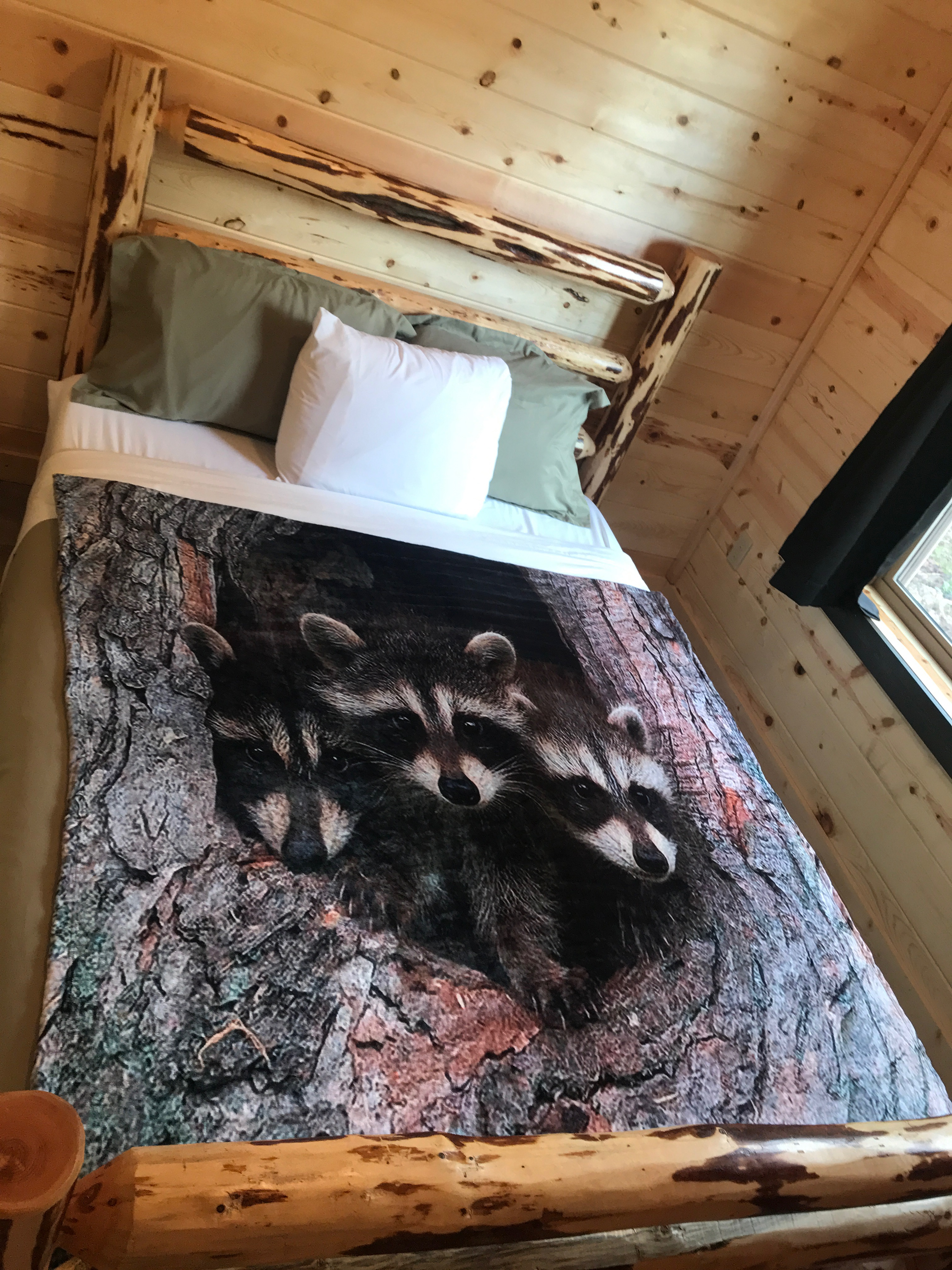 Smoky Best Lazy Raccoon Cabin In Pigeon Forge