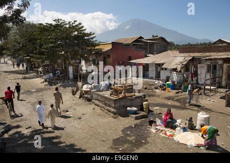 Africa Tanzania East Africa Arusha Market Cattle