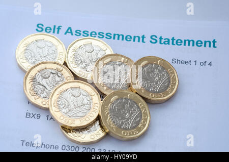 Income Tax Self assessment statement Stock Photo 66064088 - Alamy