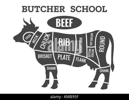 Meat cuts Poster Butcher diagram - Kuzu Stock Vector Art