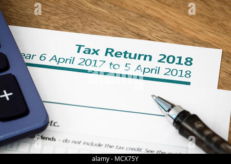 UK HMRC self assessment income tax return form 2019 Stock Photo