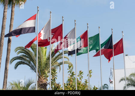 Flags of MENA (Middle East and North Africa on a series of flagpoles