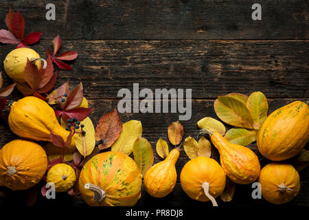 Happy Thanksgiving Background Autumn Harvest and Holiday border