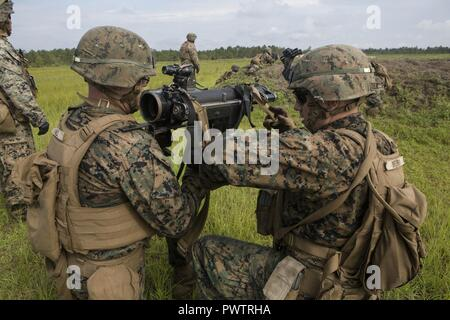 US Marine infantry assaultmen with 2nd Battalion, 8th Marine Stock