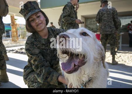 Pfc Victoria Escobedo, student, Marine Corps Communication