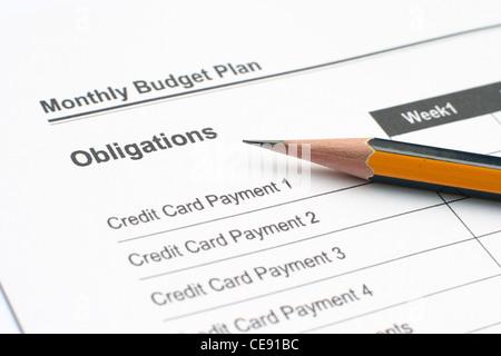 Presupuesto mensual Los ingresos de la familia fondo de gastos y - presupuesto mensual