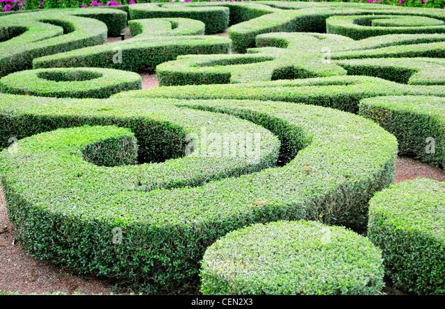 Labyrinth Maze Garden Stock Photos \ Labyrinth Maze Garden Stock - labyrinth garden design