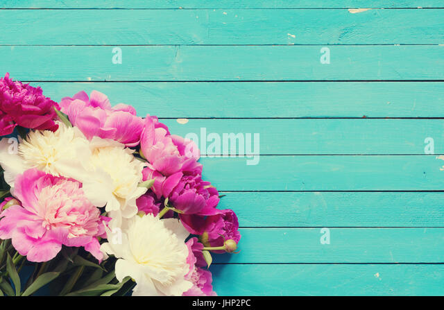 Turquoise Flowers Background Stock Photos  Turquoise Flowers