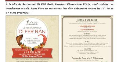 thumbnail of FLASH N° 42 Restaurant Di FERRAN InscriptionEcole MainVerte2019 Fibre optique