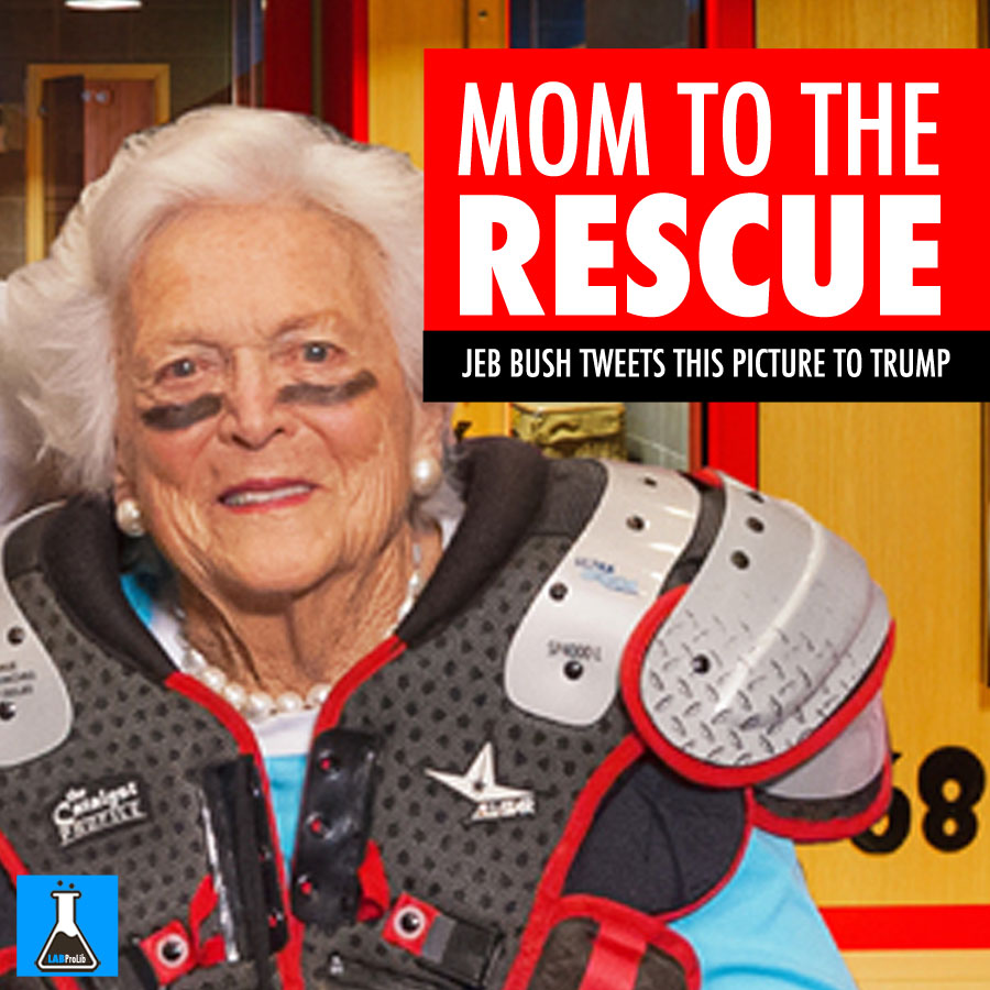mom-to-the-rescue-
