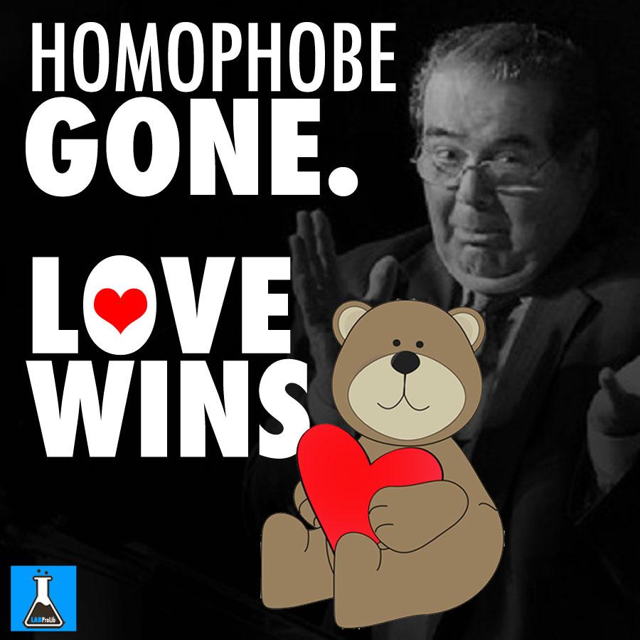 LOVE-WINS