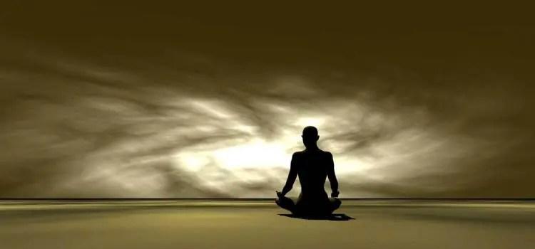 Mindfulness: la vida en el  bosque de la mente