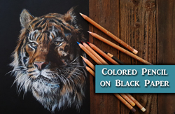 Drawing in Colored Pencil on Black Paper