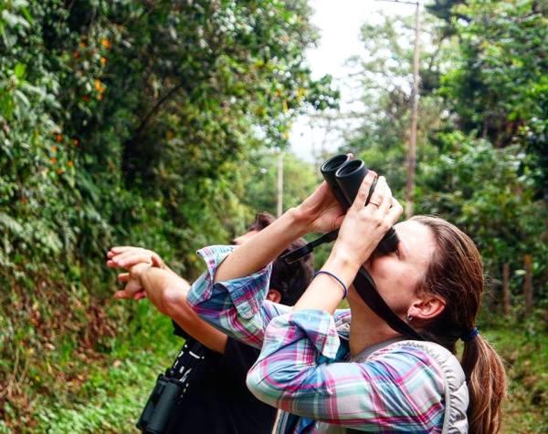 Kilómtro 18, avistamiento de aves en Cali