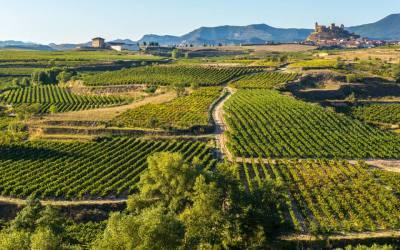 Un puente en La Rioja, qué hacer