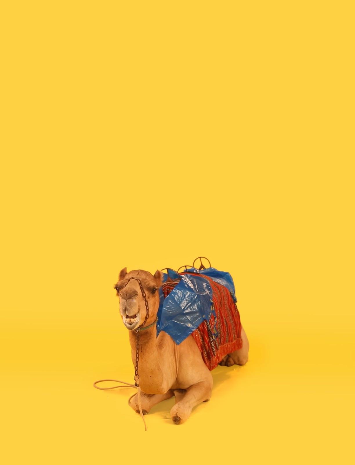 Ikea crea tutoriales para transformar su bolsa frakta en - Bolsas vacio ropa ikea ...