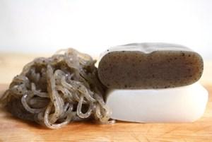konjac-bio-regime-coupe-faim-naturel-minceur-poudre-bloc-maigrir-vertus-proprietes-perte-poids-vegetarien