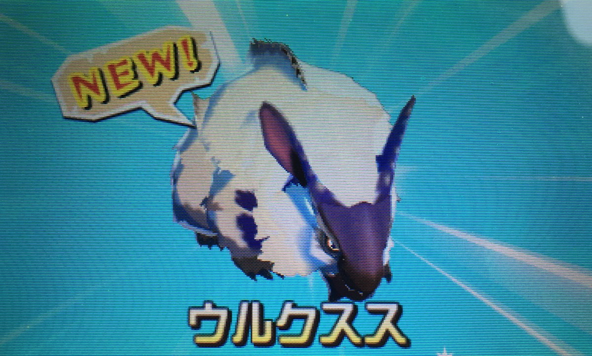 Monster Hunter Stories dragon collecting