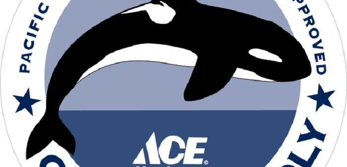 'Orca-Friendly' Products Have Arrived at the Hardware Store