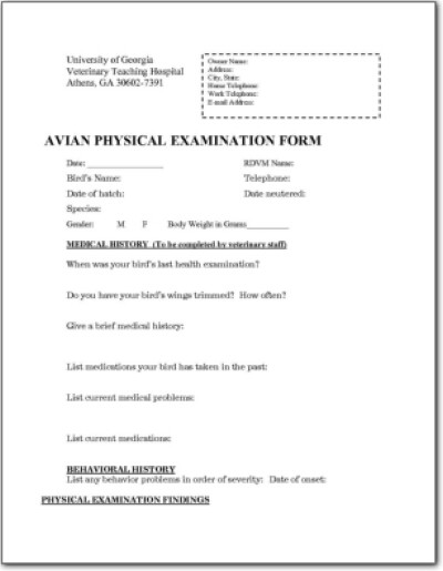 Avian Physical Examination Form 3 LafeberVet - physical exam form