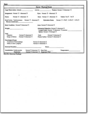 Ferret Physical Examination Form LafeberVet - physical exam form