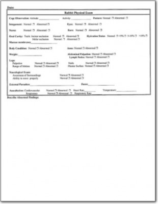 Rabbit Physical Examination Form LafeberVet - physical exam form