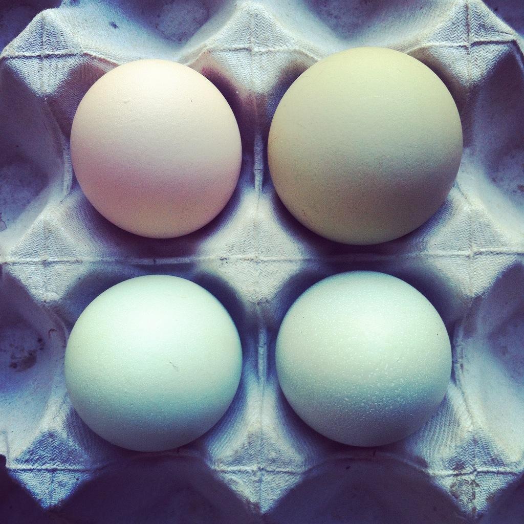 Ponche de huevo verde