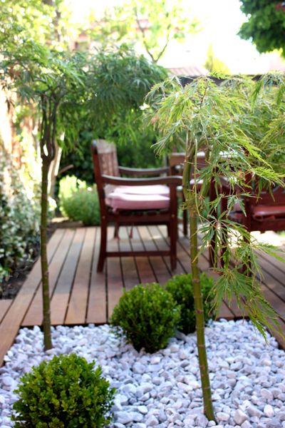 jardin de diseño para vivienda
