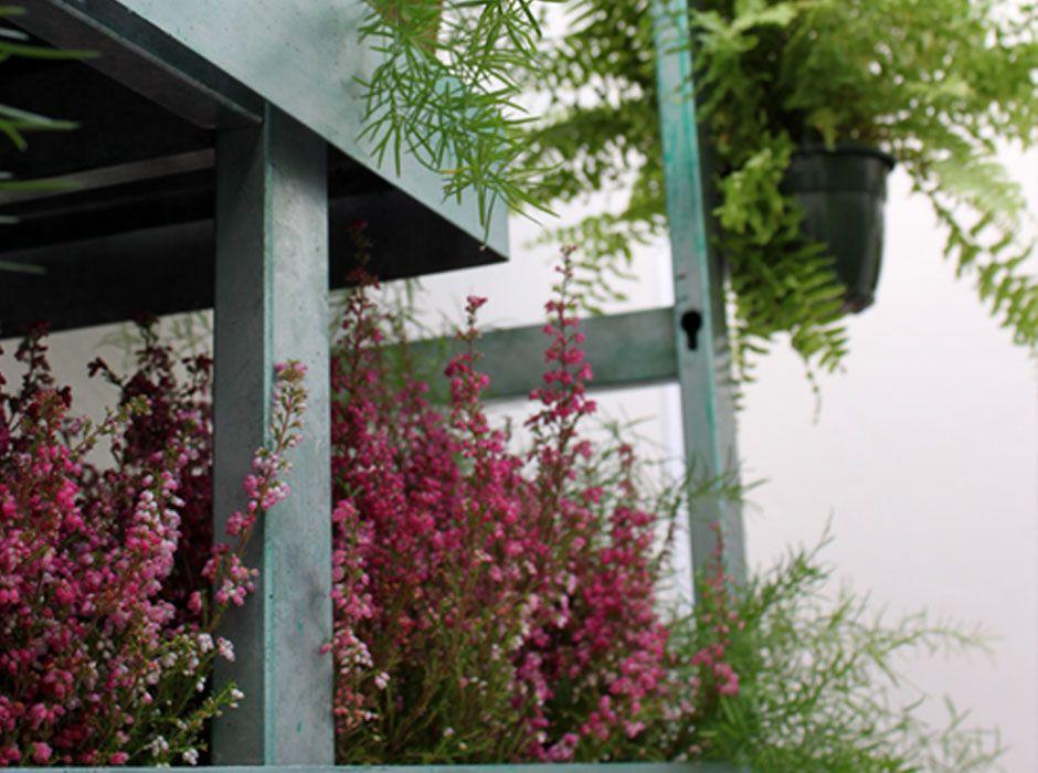 La habitaci n verde jard n vertical en oficinas en madrid for Jardin vertical madrid