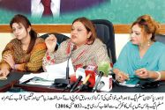 Those who maltreated women should be punished: PML Women Wing