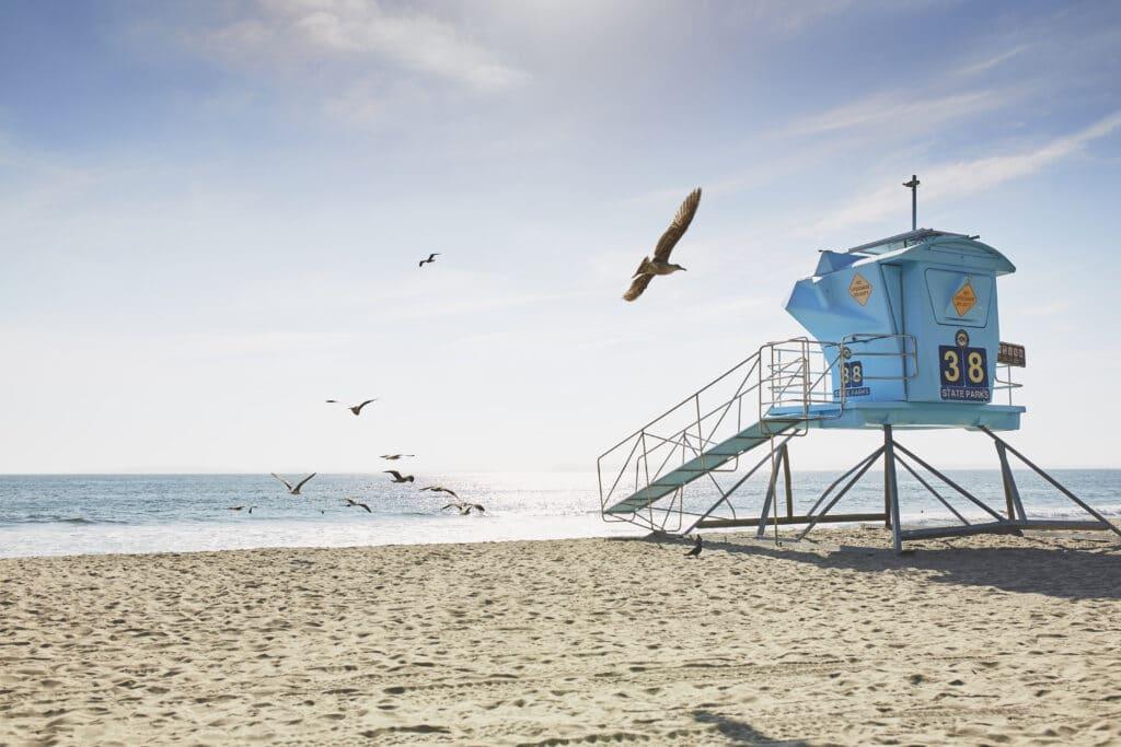 Guide to Carlsbad Beaches - La Jolla Mom