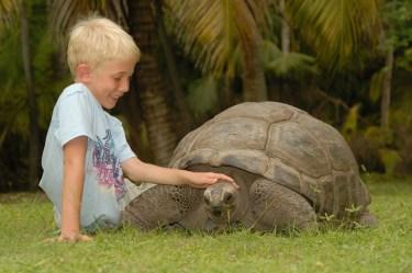La_Digue_Island_Seychelles_02