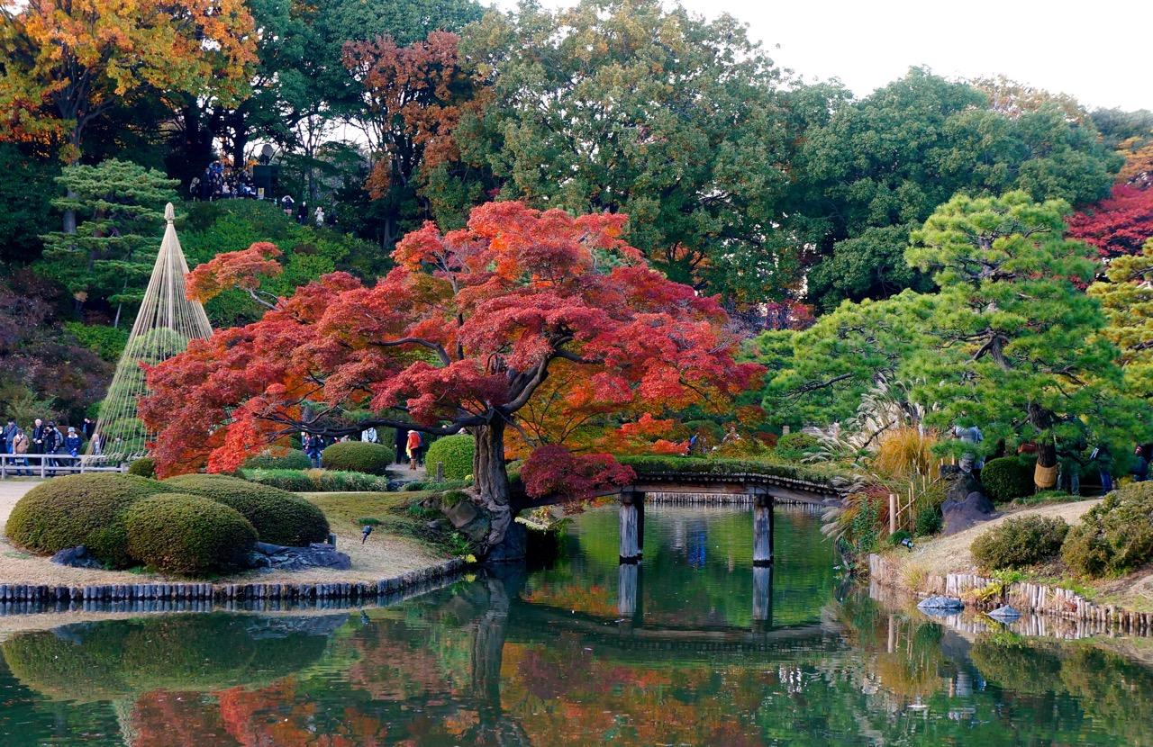 Central Park Fall Wallpaper Autumn 2014 Rikugien Garden Lakbayer