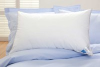 Lalit Mohan Srimany - 100 percent cotton bed sheets,Cotton ...