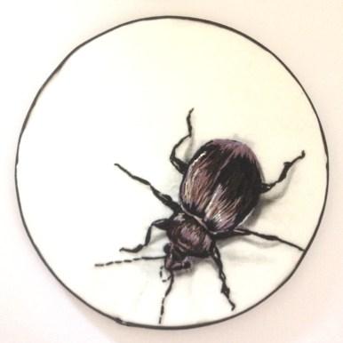 Galina Budkin - Beetle