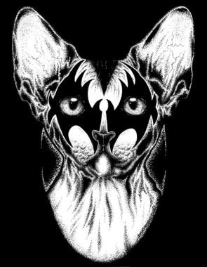 Josh Stebbins - Kiss Kitty