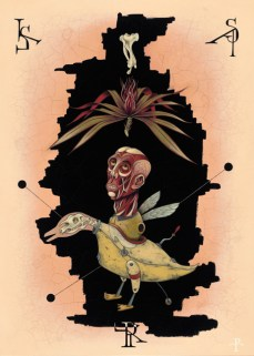 Pol Turgeon - The Duck
