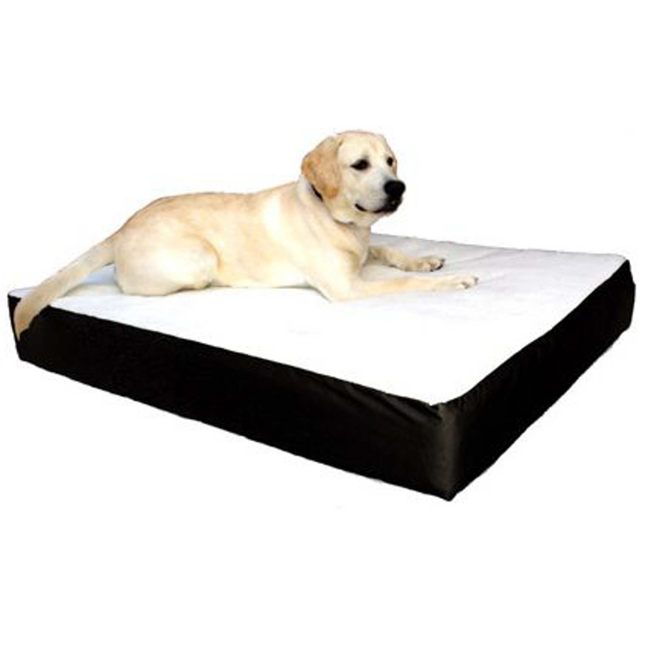Double Dog Bed Orthopedic Double Pet Bed Arthritic Dog Bed Lambert Vet Supply
