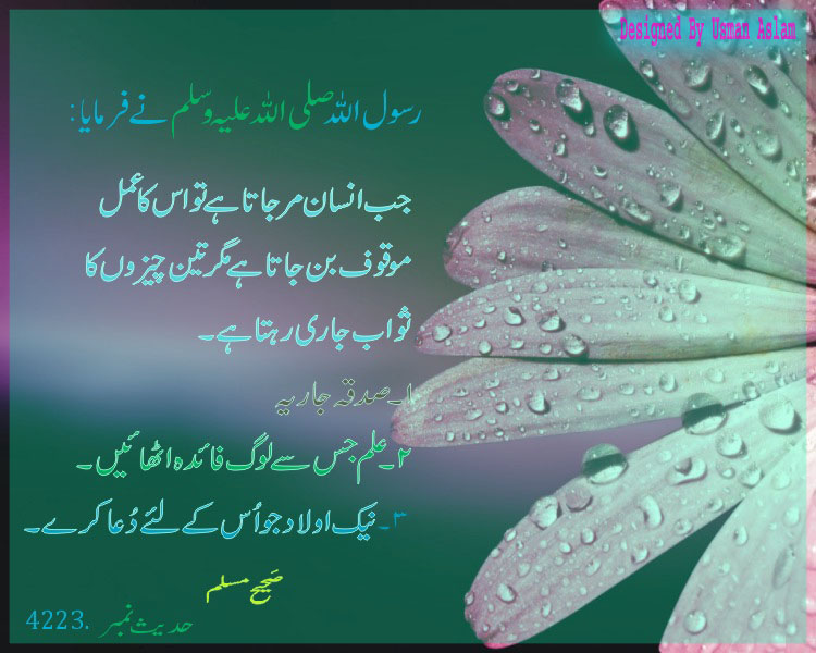 Sufi Wallpapers With Quotes Free Download Urdu Aqwal E Zareen Lambi Judai