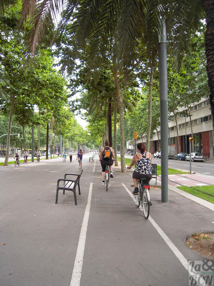 Carril bici Av Diagonal